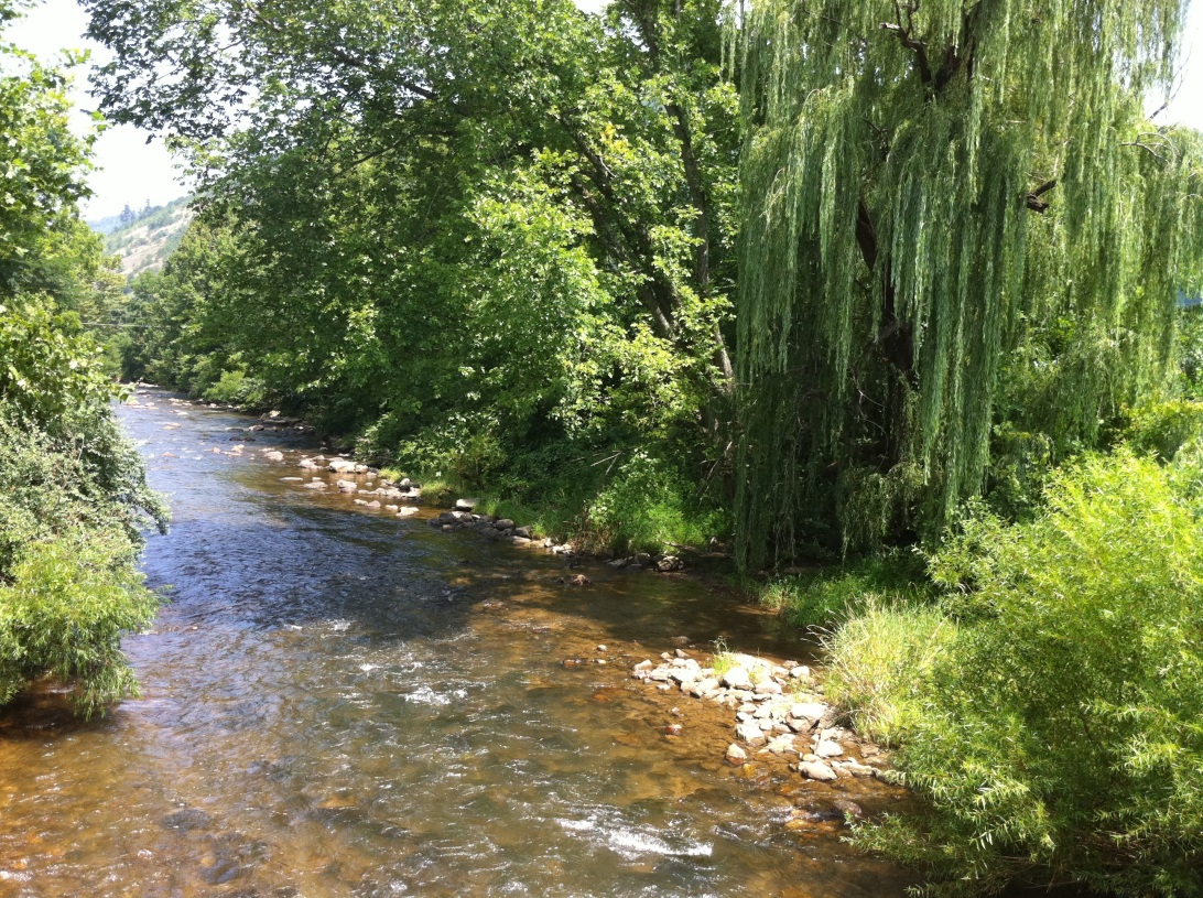 Is there anything more peaceful than a mountain stream?