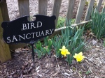 Birds are always welcome!