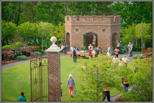 P Allen Smith's Rose Garden