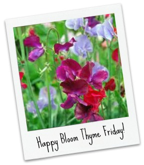 Sweet Peas_Bloom Thyme Friday
