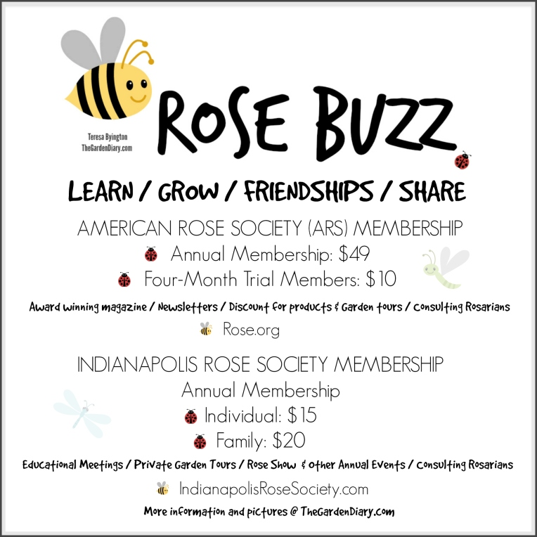 Rose Buzz_Membership