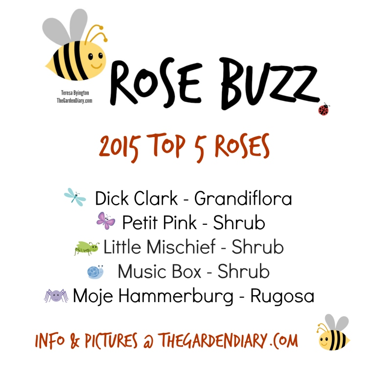 Rose Buzz_Top 5_2015